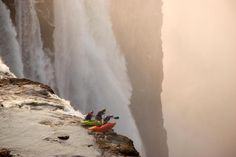 Whitewater Kayaking Extreme kayaking at Victoria Falls. - Whatever you do, don't look down. Chutes Victoria, Concours Photo, Living On The Edge, Whitewater Kayaking, Canoeing, Extreme Sports, The Great Outdoors, Cool Photos, Scary Photos