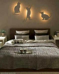 cat lights
