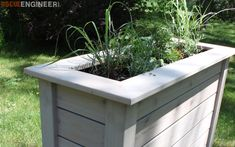 Tall Privacy Planter { Free DIY Plans } Rogue EngineerTall Privacy Planter { Free DIY Plans } Rogue Engineer