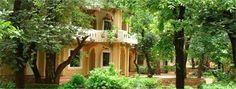 The Krishna Jungle Resort - Kanha