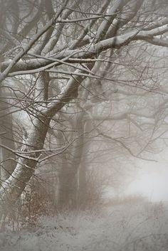 ceekayone:  December 2012