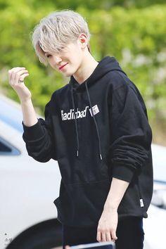 Woozi💕 in Mini Fanmeeting my page for more pic Jeonghan, The8, Hoshi, Vernon, Seventeen Album, Seventeen Wonwoo, K Pop, Winner Ikon, Hip Hop