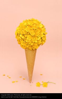 ice cone with flowers, yellow on rose background, funny, still life photography