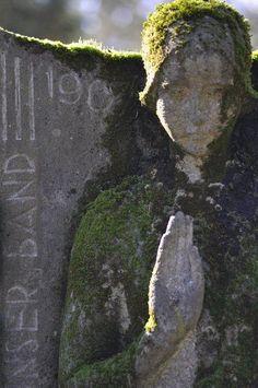 """""""A Forest Cemetery"""" by miamou La vie est plus forte que la mort."""