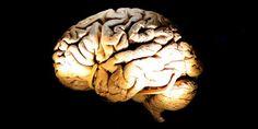 Des étudiants israéliens informatisent le diagnostic de Parkinson