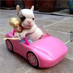 Let's go Barbie, let's go party.