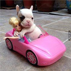 Let's go Barbie, let's go party.