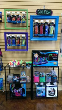 Glofish display at Odyssey.