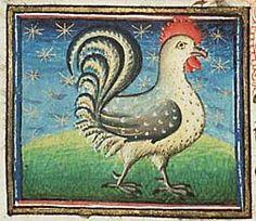 Medieval Bestiary : Cock Gallery