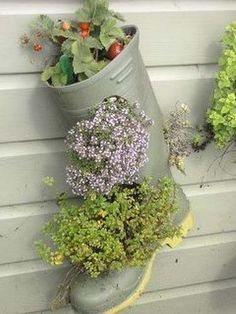 How to recycle shoes for planters