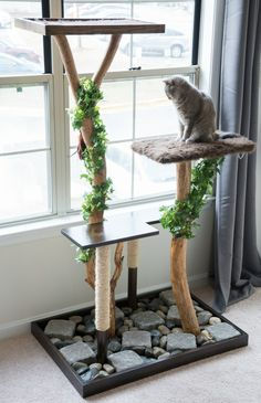 New Cat Tree Diy Towers Scratching Post Ideas Diy Cat Tower, Cat Tree Plans, Cat Climber, Diy Teepee, Cat Perch, Cat Stands, Cat Playground, Rock And Pebbles, Cat Scratcher