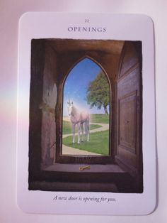 Unicorn Oracle Cards by StarCrystalKeeper on Etsy, $16.00