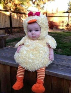 Kids Discover Costume poussin- Carnaval Halloween Ideas Grandcrafter DIY Christmas Ideas Homes Decoration Ideas So Cute Baby Baby Love Cute Babies Baby Kids Cute Children Pic Baby Happy Children Child Baby Little Babies So Cute Baby, Cute Babies, Cutest Babies Ever, Baby Duck Costume, Duck Costumes, Animal Costumes, Babies In Costumes, Baby Chicken Costume, Mom And Baby Costumes