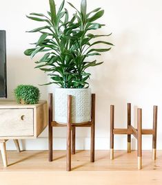Walnut hardwood mid-century plant stand.   Scandinavian Design Interior Living   #scandinavian #interior