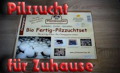 fungus factory mushroom growing kit how to zm grow kit. Black Bedroom Furniture Sets. Home Design Ideas