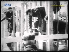 Film na videlo (filmski pregled br.6), 27. februar 2013 - http://filmovi.ritmovi.com/film-na-videlo-filmski-pregled-br-6-27-februar-2013/