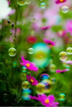 Everyone deserves a perfect world! Bokeh Photography, Blowing Bubbles, Soap Bubbles, Happy Paintings, Water Droplets, Perfect World, World Of Color, Looks Cool, Simply Beautiful