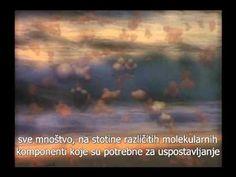 Otključavanje misterije života - http://filmovi.ritmovi.com/otkljucavanje-misterije-zivota-3/