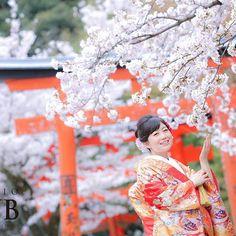 【studiotvbkyoto】さんのInstagramをピンしています。 《スタジオTVB京都  d_weddingphoto  桜のご予約はお早めに!!! Photographer:岩本 由加(Y Iwamoto) #プレ花嫁 #前撮り#京都 #ウェディング #和装 #ロケーションフォト#weddingphoto #bridal #bridalphotography#Kyoto#instagramjapan #スタジオtvb #スタジオ#色打掛#Japan #location #吉田神社#結婚写真#2017夏婚#followme  #カップル#夫婦#カメラ#写真#ポートレイト#like4like#l4l#桜#春》
