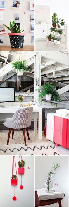 10 tips to add green to your home | This Little street : This Little street