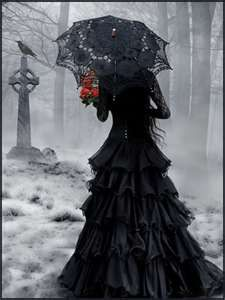 Looks kinda gothic literature-esque- like the Raven...