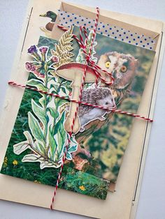 Autumn Vibes Pack 5 junk journaling kit nature forest