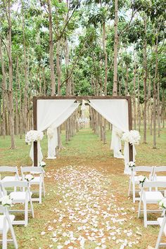 Hardwood Forest Ceremony site in the beautiful Na Aina Kai Botanical Gardens Kauai.