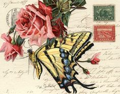 The Tiger Swallowtail