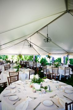 Chiavari Chairs, Table Decorations, Tents, Wedding Ideas, Furniture, Home Decor, Teepees, Decoration Home, Room Decor