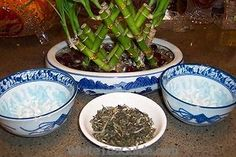 White Tea originally came from China and has become popular worldwide due to its health benefits