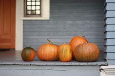 ~ Pumpkin Everything ~