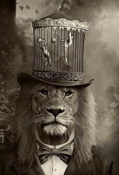Ringmaster with lion head wearing caged mini circus hat! Dark Circus, Circus Art, 3d Fantasy, Vintage Circus, Surreal Art, Belle Photo, Cat Art, Nature Photography, Artistic Photography