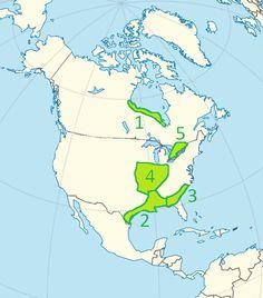 Niziny Ameryki Północnej - mapa 1. Nizina Hudsońska 2. Nizina Zatokowa 3. Nizina Atlantycka 4. Równiny Centralne 5. Nizina Wielkich Jezior