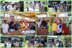 Santa Filomena Atual: Neps e Educação entregam cisternas nas escolas de ...