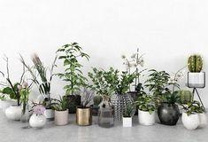 3d Plant Model 377 Free Download Free Plants, Model, 3d, Scale Model, Models, Template, Pattern, Mockup