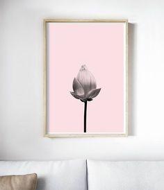 Beautiful Flower Photography | Flower Art Print | Modern Floral Art | Pink Art Print | Pink Decor | Pink Wall Art | Lotus Bud Art by Little Ink Empire
