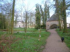 2014-03-23 Het was weer eens tijd om Hackfort te bezoeken. In deze periode is er volop bloemenpracht te zien, zoals veel bosanemoontjes