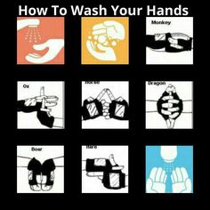 How to properly wash your hands. I made this myself.