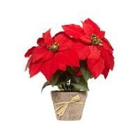 LINEA-HOME AND GARDEN-Flowers-Linea Red Poinsettia arrangement-£15.00-Linea Red Poinsettia arrangement , Artifical Flowers.