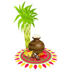 Happy Pongal Images, Greetings, Pictures For Pongal 2020 Wishes Pongal Festival Images, Pongal Images, Diwali Images, Pongal Wishes In Tamil, Happy Pongal Wishes, Pongal Greeting Cards, Sankranthi Wishes, Happy Makar Sankranti, Happy Anniversary Quotes