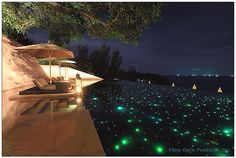 Who doesn't wanna swim in a pool full of stars..get your LED fiber optic lights installed so wicked