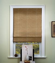 Possible New Window shades
