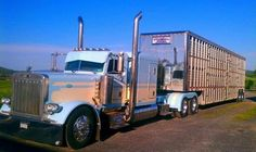 Bull Hauler | Flat top Pete's | Pinterest