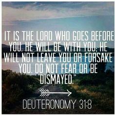Deuteronomio 31:8 NVI El Señor mismo marchará al frente de ti y estará contigo; nunca te dejará ni te abandonará.  No temas ni te desanimes.