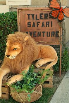 """idea we could go to the cats tour in gentry arknasas Photo 13 of Jungle Safari / Birthday """"Jungle Safari Adventure"""" Safari Theme Birthday, Safari Birthday Party, Animal Birthday, Zoo Party Themes, Jungle Theme Parties, Party Ideas, Party Animals, Animal Party, Musical Rey Leon"""