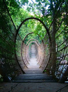 "Spider Bridge in Sun City North-West of South Africa.  ....Many tourists say it's like ""walking through an amazing portal to another world"""