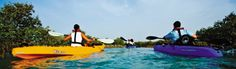 Choose from an array of luxury hotel deals by Anantara Hotels, Resorts & Spas and enhance your next vacation experience with exciting savings and benefits. Island Pictures, Desert Island, Island Resort, Hotel Deals, Paddle Boarding, Resort Spa, Hotels And Resorts, Kayaking, Surfboard