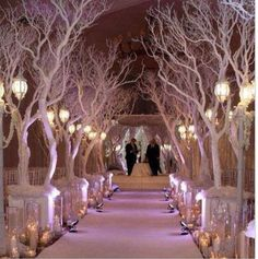 Great way to form a magical isle inside one of our wedding marquees