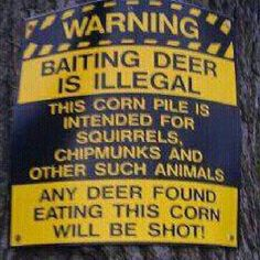 I don't even hunt, but this just cracks me up!!
