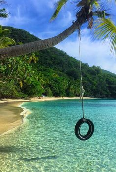 Tire swing on Oppenheimer Beach - St. John, USVI